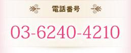電話番号 03-6240-4210